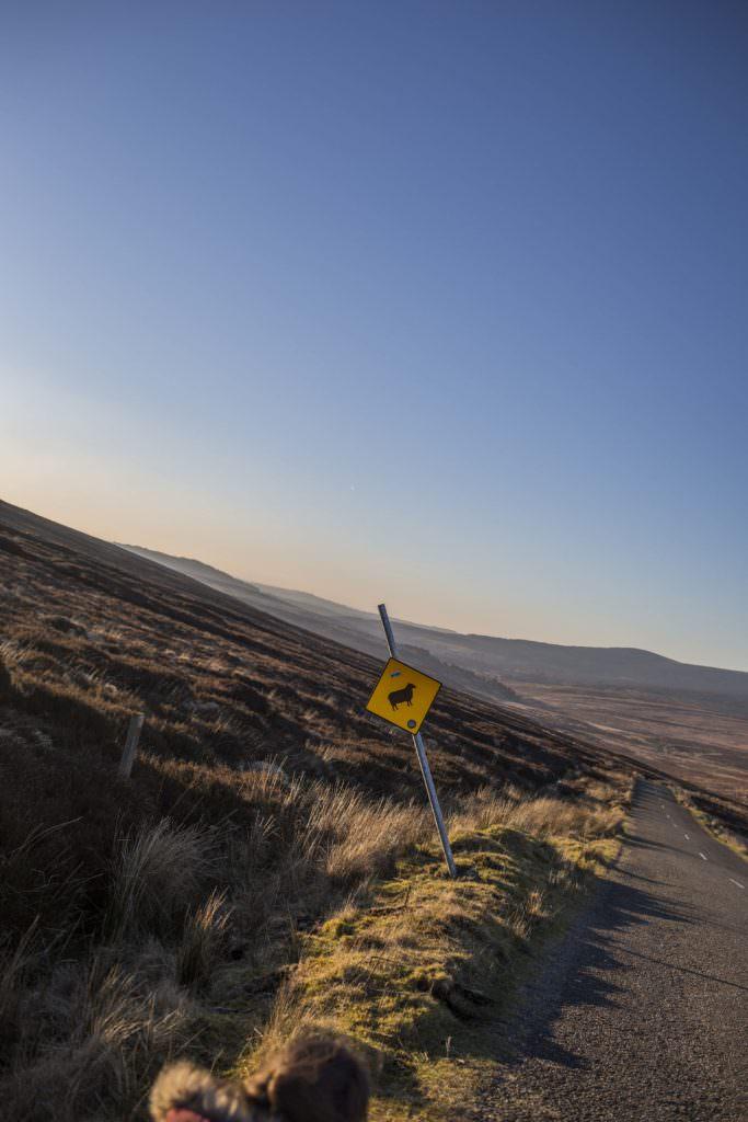 Voyage Irlande Solene Tardivon Photographe